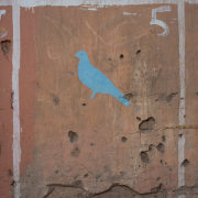 Untitled #16 (Pigeon / Electoral Poster)